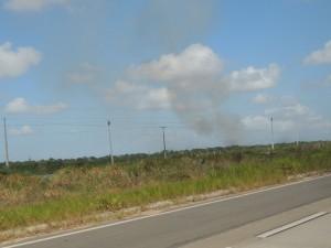 Suikerrietvelden worden na de oogst in brand gestoken